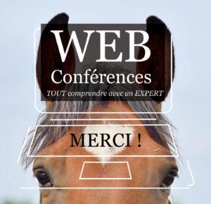 DIR-Webconf-Merci