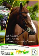 La filière équine en Champagne-Ardenne