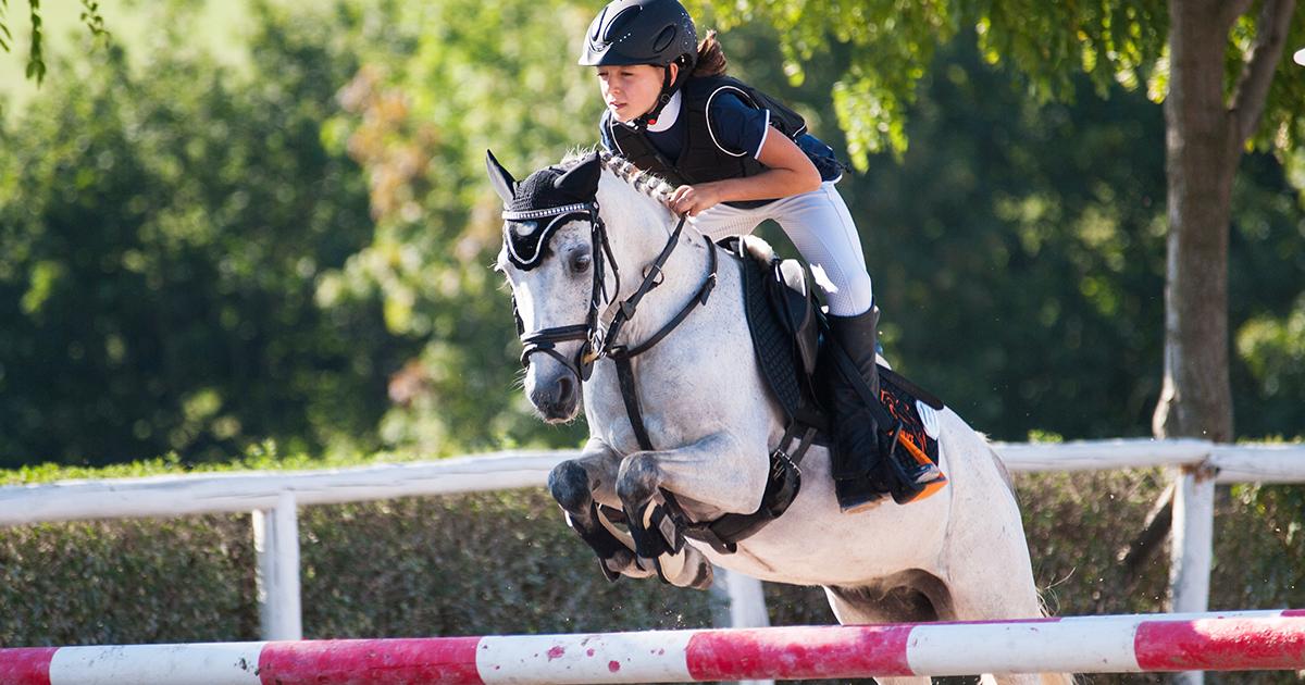 L'indice génétique saut d'obstacle chez le poney - Ifce
