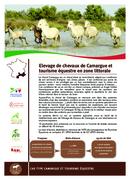 Elevage de chevaux de Camargue et tourisme équestre en zone littorale
