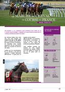 Le marché du cheval de course en France