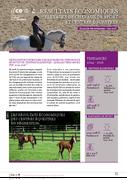 Résultats économiques des élevages de chevaux de sport et centres équestres
