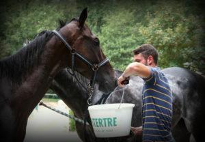 mesures : donner à boire à son cheval
