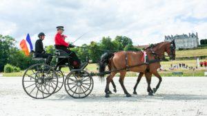 Raphaël Berrard et ses chevaux lors du concours international d'attelage au Haras National du Pin