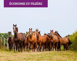 Economie et filière
