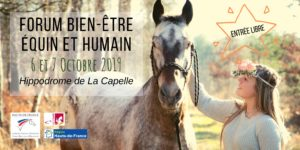 Découvrez le forum du bien-être équin et humain, les 6 et 7 octobre 2019 qui se déroulera à l'Hippodrome de La Capelle
