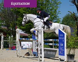 équitation saut d'obstacles
