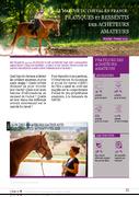 Le marché du cheval en France : pratiques et ressentis des acheteurs amateurs