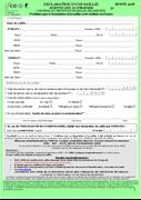 Formulaire DRS Verte - saillie étrangère