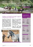 Le marché du cheval de loisir en France