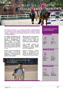 Le marché du cheval d