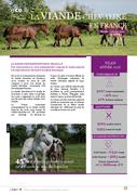 La viande chevaline en France : Bilan 2018