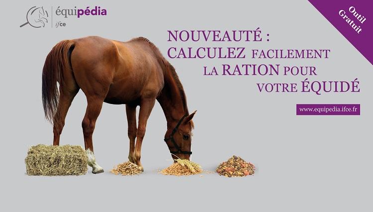 Un Nouvel Outil Pour Calculer La Ration D Un Equide L Institut Francais Du Cheval Et De L Equitation