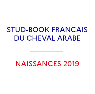 Stud-book du Pur sang Arabe 2020 - Ifce