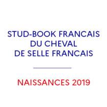 Vignette stud-book du cheval de selle français naissances 2019