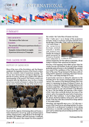International Newsletter - Summer 2020