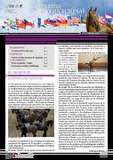 Newsletter internacional - Verano 2020