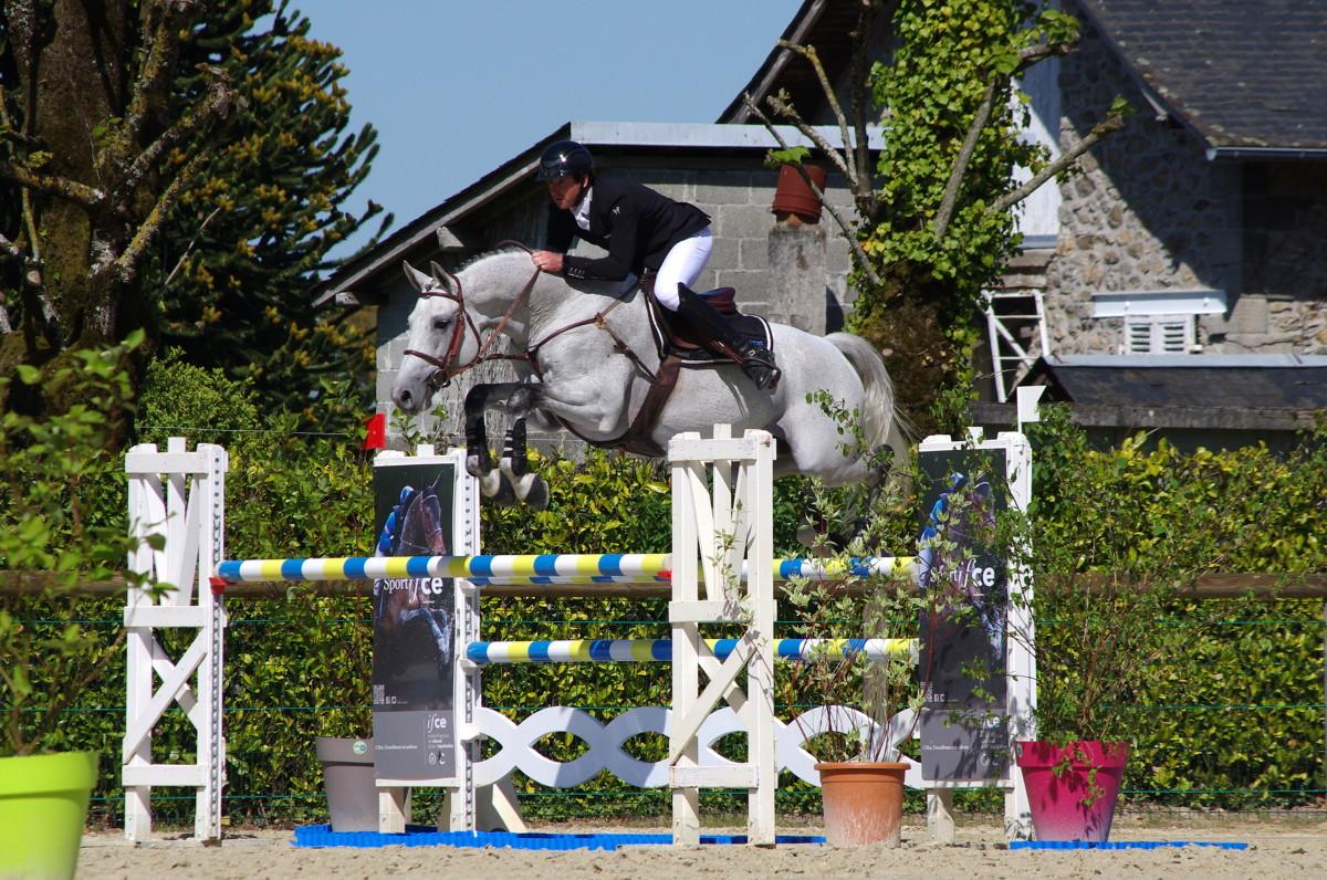 cheval sautant un oxer en concours. Exploitation des chevaux contrat et responsabilite